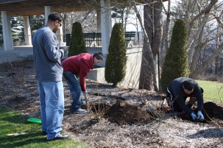 Planting Day 2011 – 8